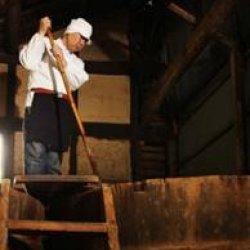 画像2: 田中屋・OLiVO百年蔵醤油(OLIVOプレミアムファーストドリップ)